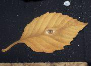 Leaf (detail)